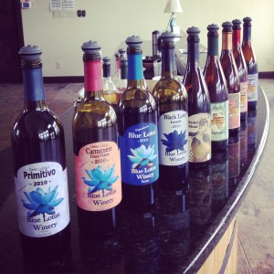 Hill Country Wineries Reviews