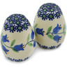 2-inch Stoneware Salt and Pepper Set - Polmedia Polish Pottery H9529J