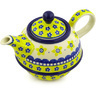 22 oz Stoneware Tea or Coffee Pot - Polmedia Polish Pottery H8575F