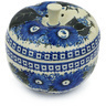 5-inch Stoneware Apple Shaped Jar - Polmedia Polish Pottery H8612G