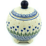 5-inch Stoneware Jar with Lid - Polmedia Polish Pottery H6286H