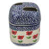 5-inch Stoneware Toothbrush Holder - Polmedia Polish Pottery H7800K