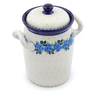 9-inch Stoneware Jar with Lid and Handles - Polmedia Polish Pottery H2793J